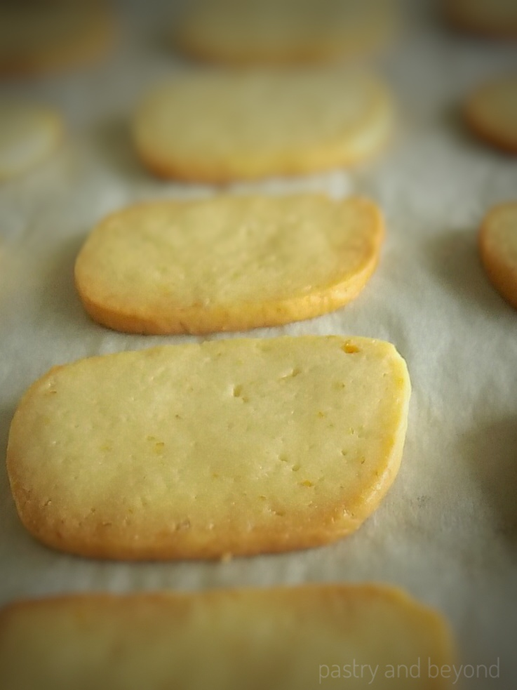 Lemon Slice-and-Bake Cookies after baking on a parchment paper.
