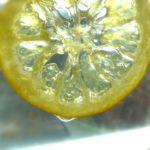 Crystallized Lemon