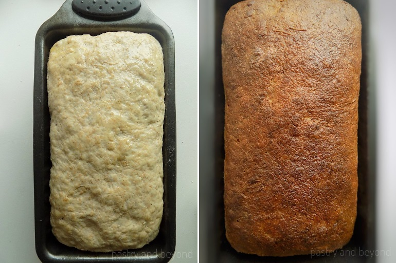 Olive Oil Brushed dough before and after baking.