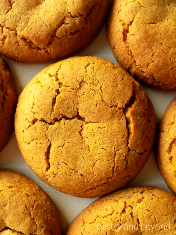 Soft Molasses Cookies on a white surface.